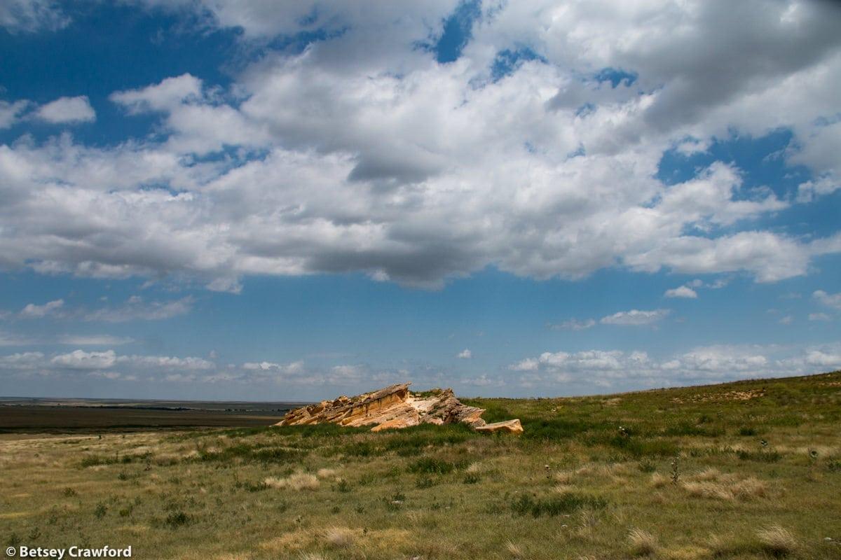 Limestone outcrop in in Smoky Valley Ranch, Kansas