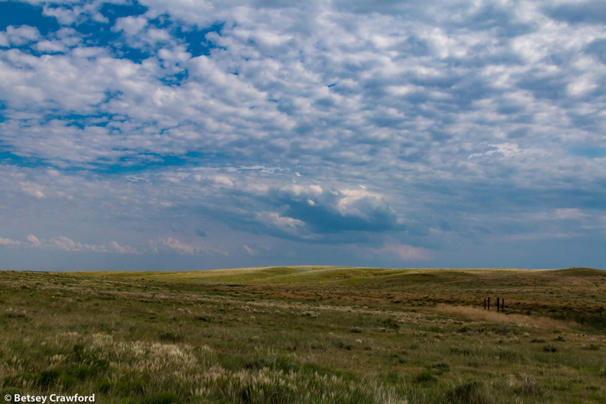 Pawnee National Grasslands, Colorado