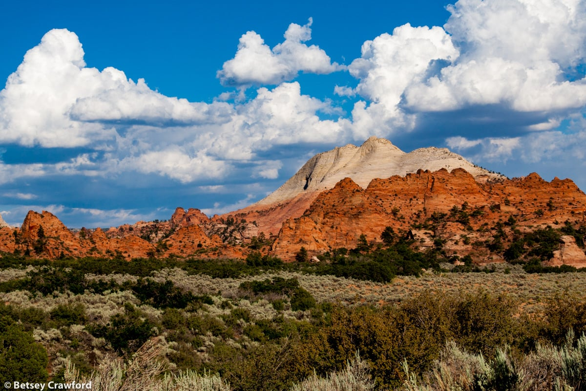 A good view of what Utah offers: sage, junipier, red rocks, white rocks, intense blue sky, beautiful clouds