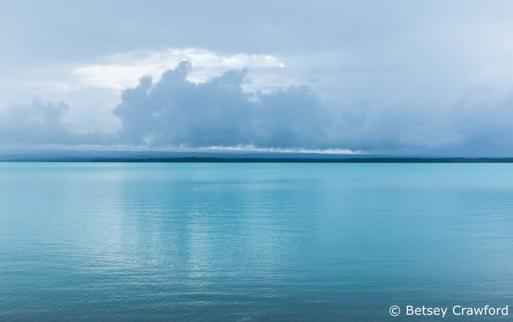 Cook Inlet from Captain Cook State Park, Kenai
