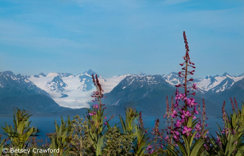 Grewingk Glacier seen from Homer