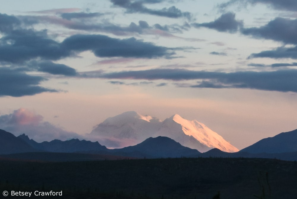 Mount Denali emerging from its frequent cloud cover, Denali National Park