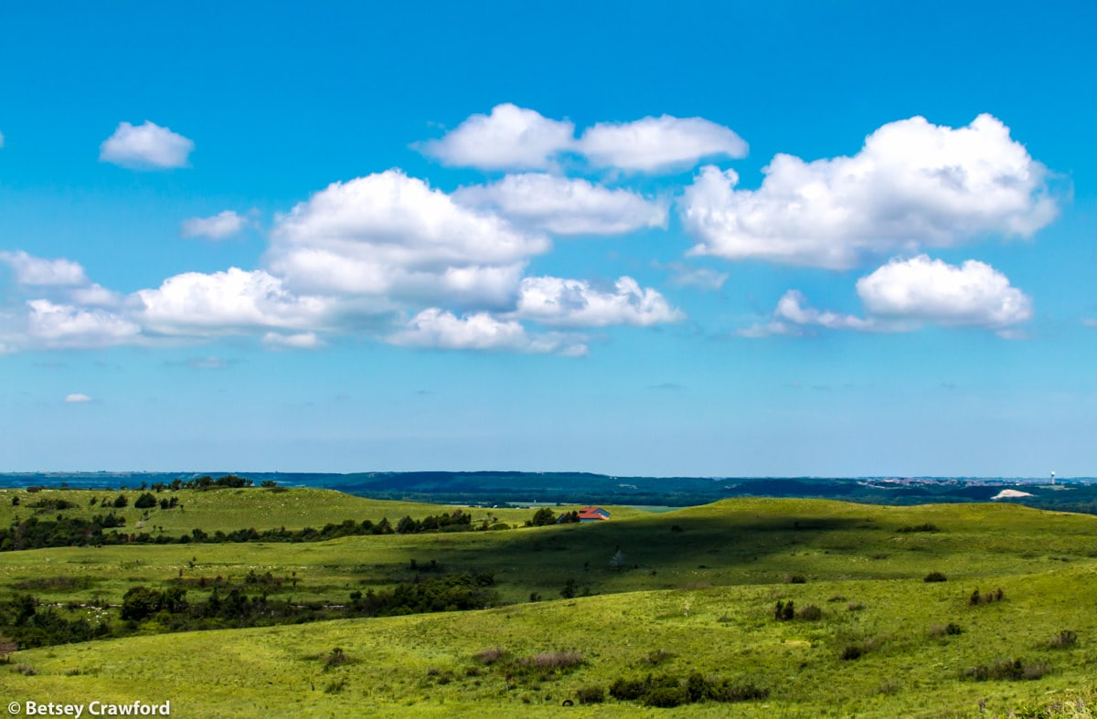 A view in the Konza Prairie Biological Station in the Flint Hills in central Kansas