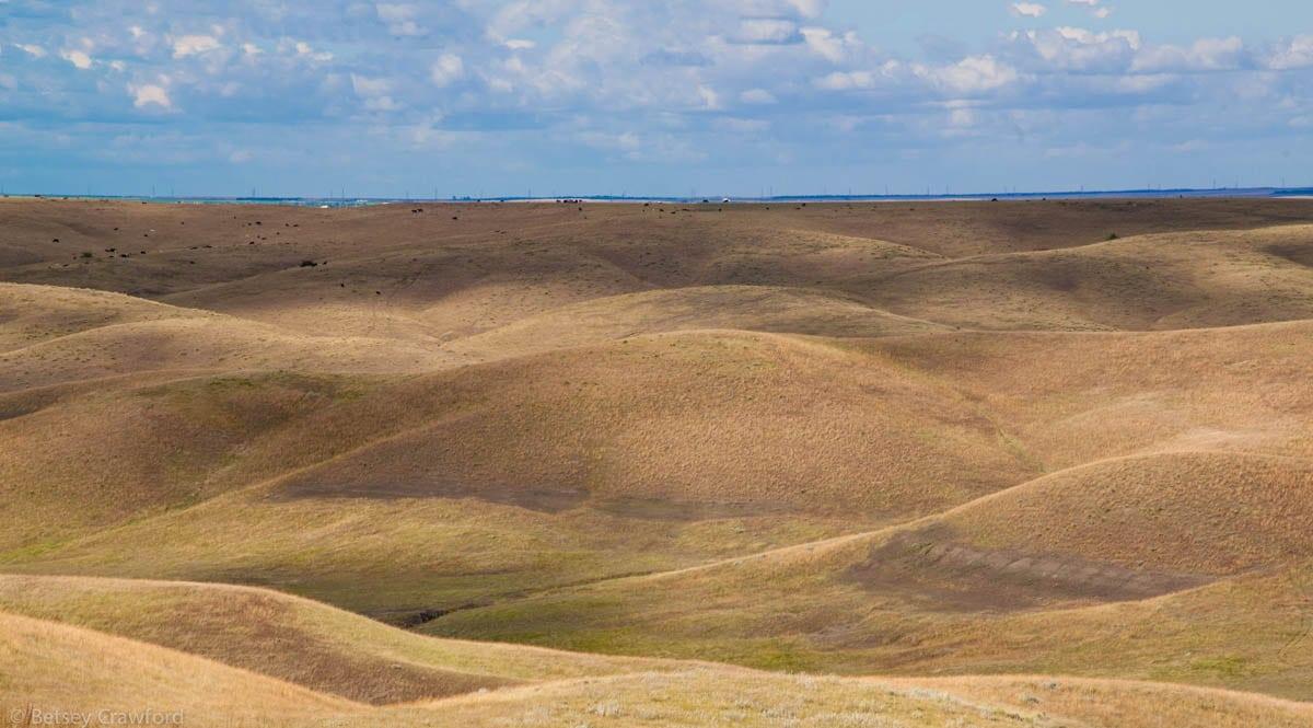 fort-pierre-national-grasslands-south-dakota-by-betsey-crawford