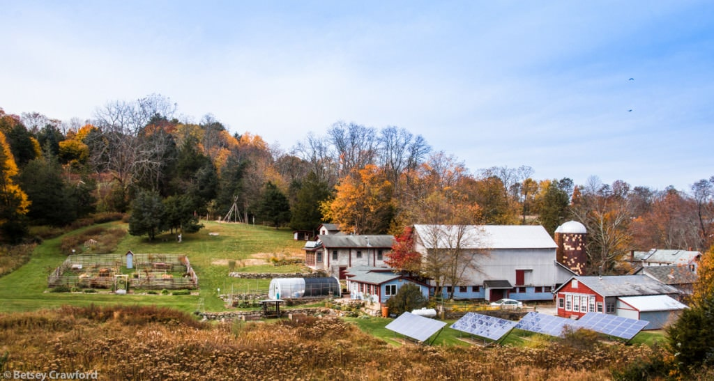 autumn-Genesis-farm-Blairstown-New-Jersey-by-Betsey-Crawford