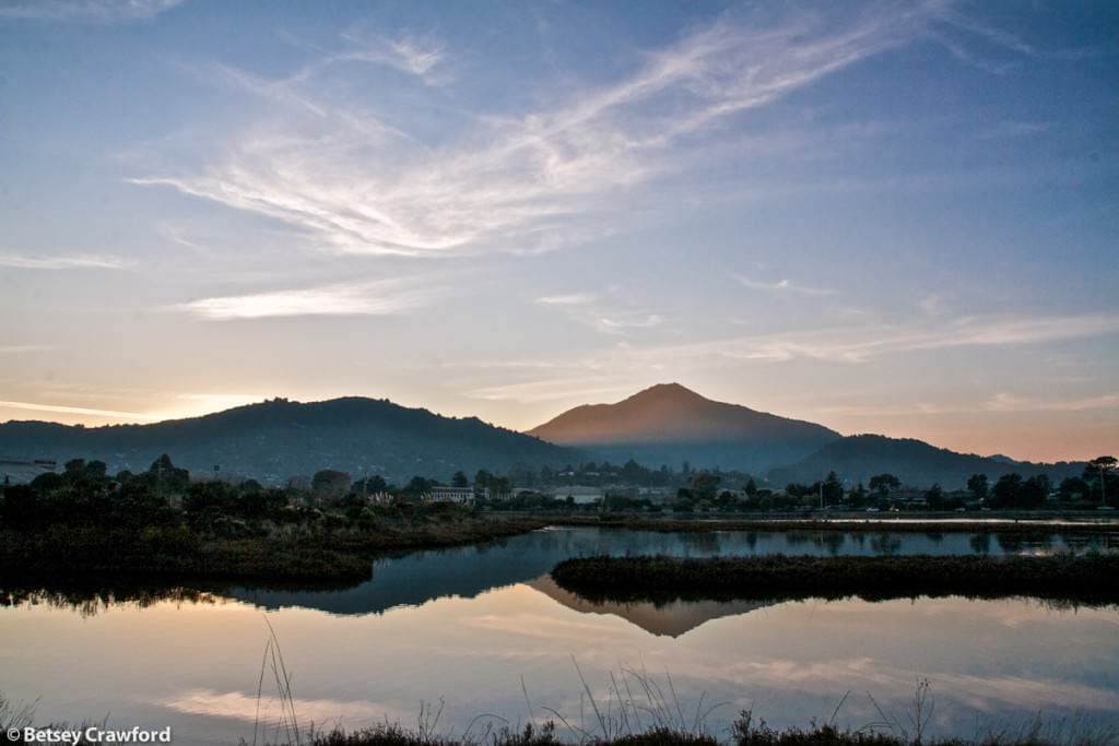Mount Tamalpais from the Corte Madera Ecological Preserve, Corte Madera, California