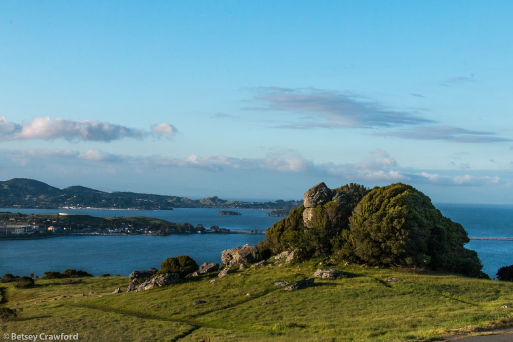 Looking north from Ring Mountain, Tiburon, California
