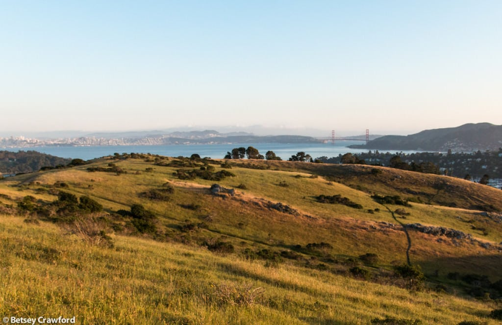 Looking toward San Francisco and the Golden Gate Bridge from Ring Mountain, Tiburon, California