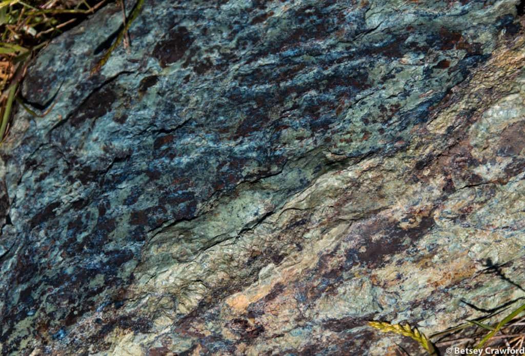 Serpentine rock on Mount Burdell, Novato, California