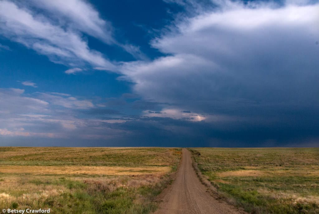 In the Pawnee National Grasslands, northeastern Colorado, by Betsey Crawford