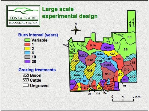 Konza Biological Preserve experimental design