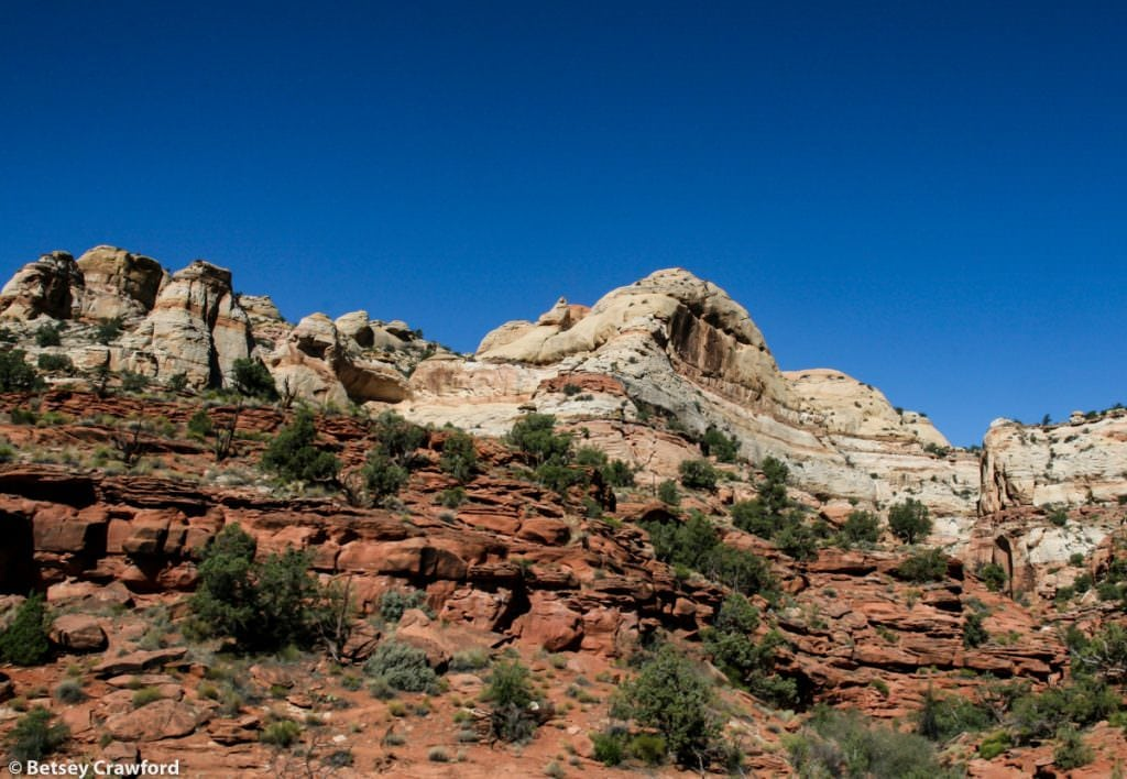 Trail in Calf Creek Recreation Area, Grand Staircase Escalante. Deep time in Utah by Betsey Crawford