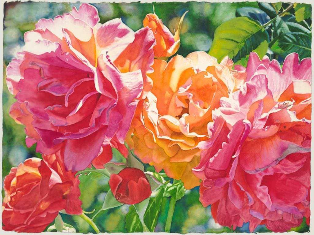 Firelight, a watercolor painting of roses by Cara Brown, Life in Full Color