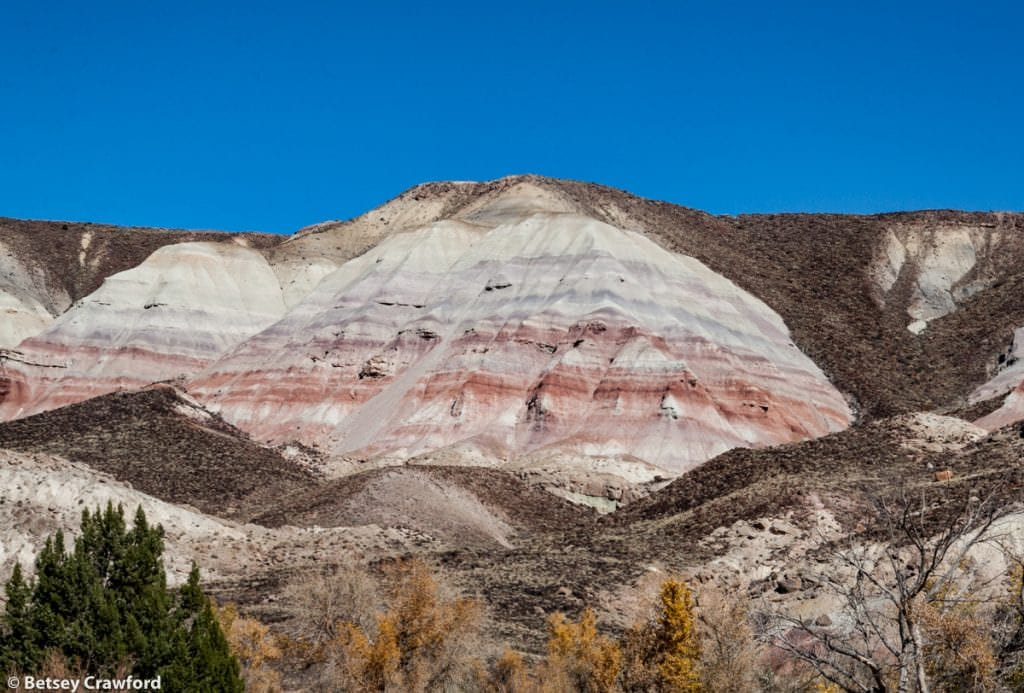 White, red and brown stone layers in southern Utah but Betsey Crawford