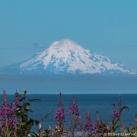 Mount Redoubt from Kenai, Alaska by Betsey Crawford