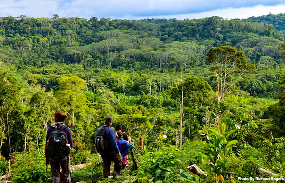 Hiking during a Pachamama Alliance Journey in the Amazon rainforest