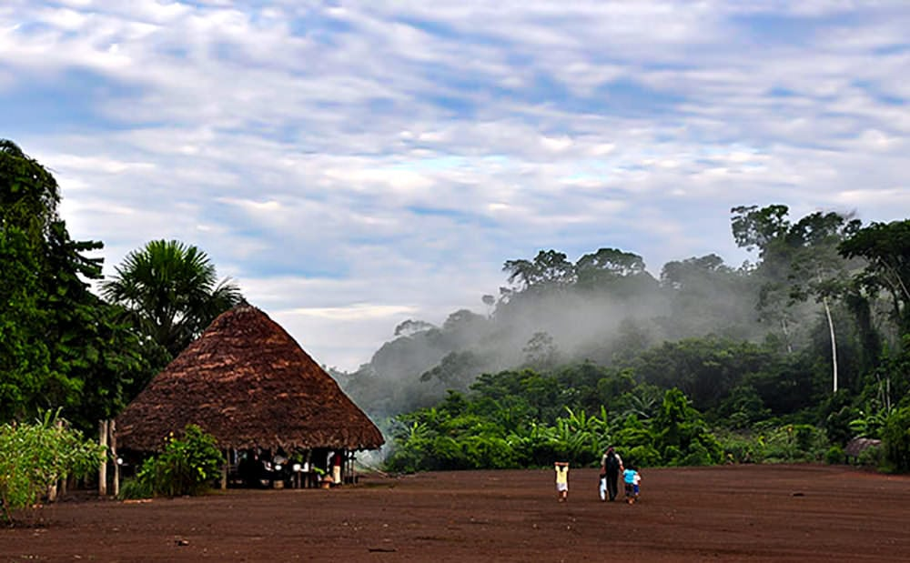 Photo of an Amazon rainforest dwelling from the Pachamama Alliance