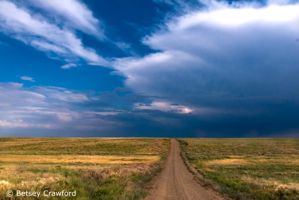 Celebrating the Season of Creation: a road through the Pawnee National Grasslands by Betsey Crawford