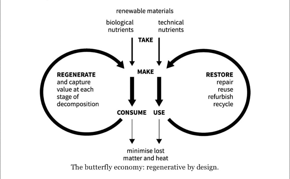 The power of centration is illustrated in Kate Raworth's butterfly economy in Doughnut Economics
