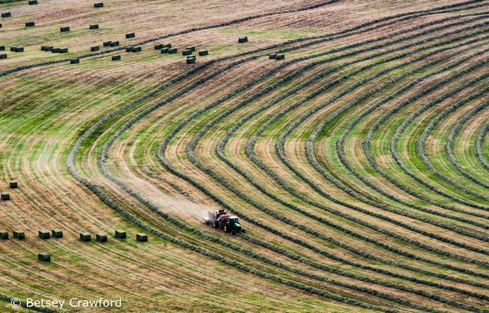 Farmer harvesting hay in British Columbia, Canada by Betsey Crawford