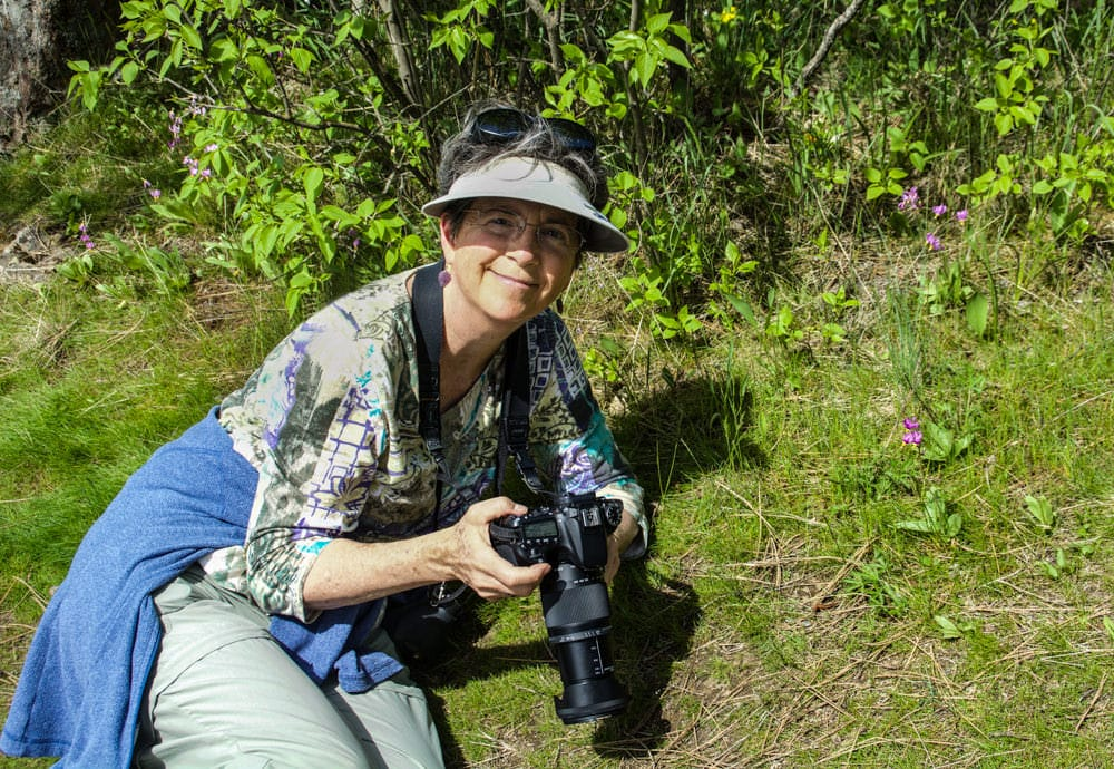 Betsey Craword photographing wildflowers on Tubbs Hill