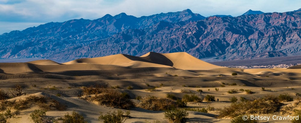 Mesquite Flats Sand Dunes in Death Valley National Park, California by Betsey Crawford