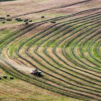 Farmer harvesting hay in British Columbia, Canada by Betsey Crawford
