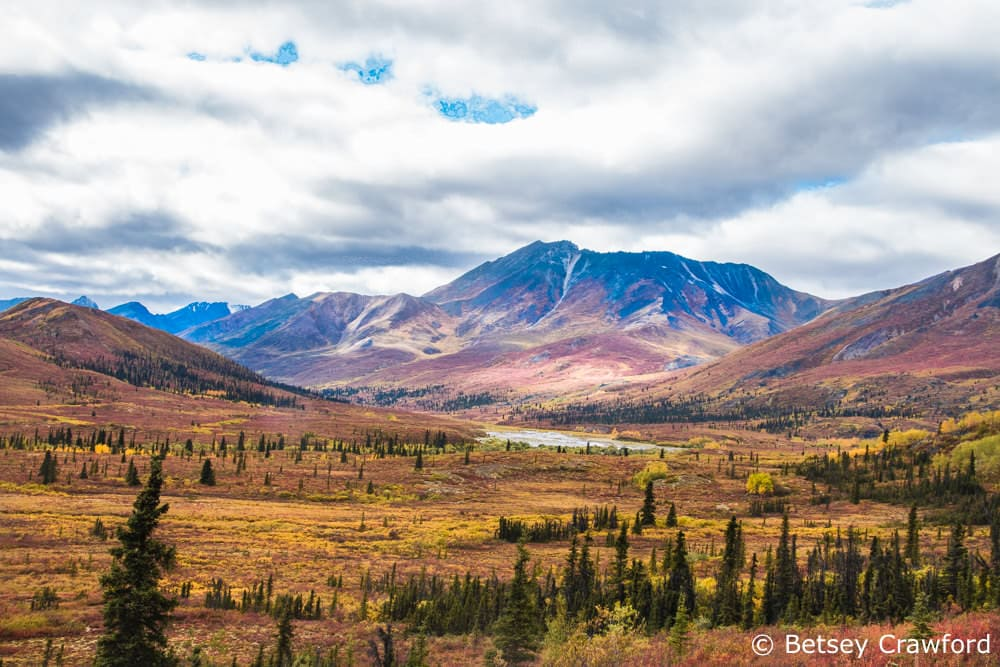 Tombstone Territorial Park, Yukon Territory, Canada by Betsey Crawford