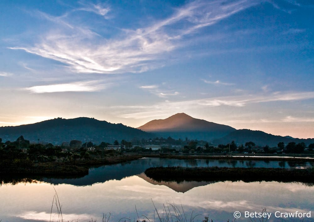 Mount Tamalpais, Corte Madera Ecological Preserve, Corte Madera, California by Betsey Crawford
