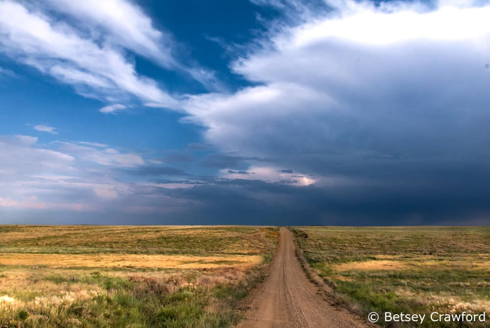 Pawnee National Grasslands in Fort Collins, Colorado by Betsey Crawford