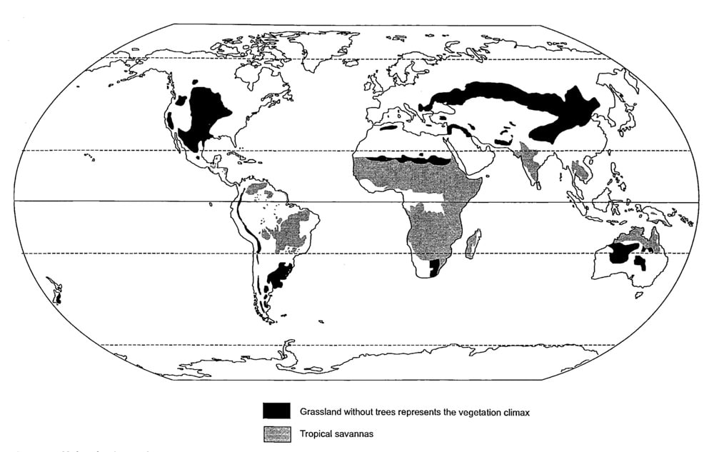 Worldwide distribution of grasslands. Image courtesy of Missouri Botanical Garden.