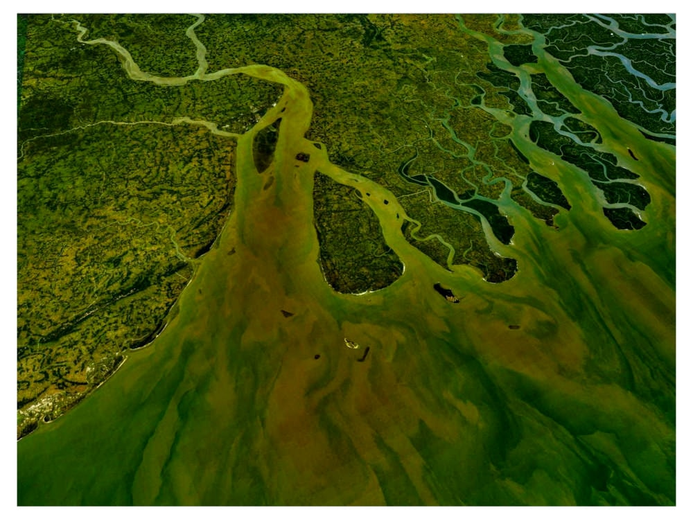 Rights of nature: The Ganges River delta. Photo from NASA's Earth Observatory