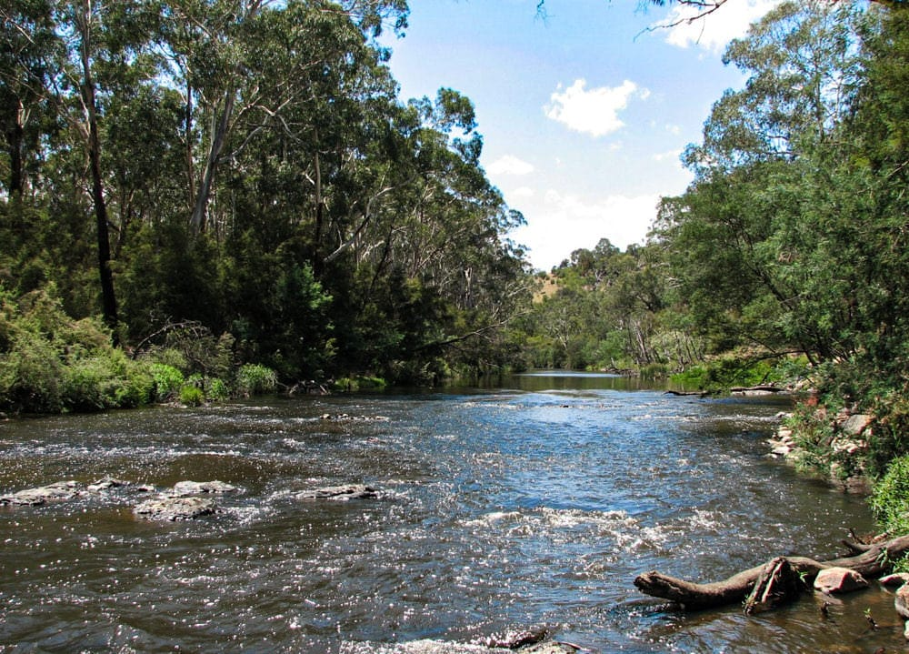 Rights of nature: The Yarra River. Photo by Melburnian via Creative Commons