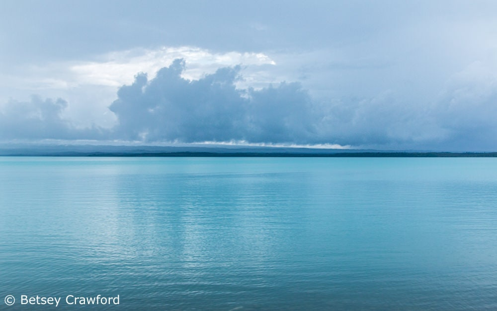 Cook Inlet from Captain Cook State Park, Kenai, Alaska by Betsey Crawford